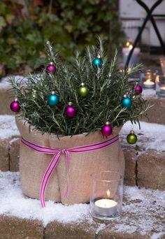 Rosmarin im Jutemantel - Schnelle Deko-Ideen für Weihnachten - Für den Rosmarin im Jutemantel braucht ihr: Jute (Meterware, 12 m lang, 60 cm breit) Schleifenband kleine bunte Weihnachtskugeln mit Aufhängung Pflanztopf mit Rosmarin Sto˜ffschere Und so geht's: 1...