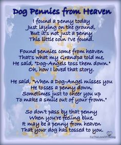 """Love this! Dog Pennies From Heaven A lovely canine adaptation of Charles Marshburn's """"Pennies from Heaven""""… What a touching and heartwarming thought. Makes you think of those found pennies in a whole different light, doesn't it? Animal Quotes, Dog Quotes, Dog Sayings, Dog Heaven Quotes, Animal Poems, Dog In Heaven, Dog Death Quotes, Clever Sayings, Sweet Sayings"""