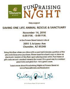New Post: Saving One Life