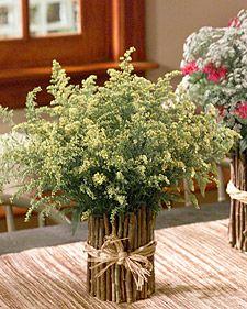 twig vases- love love love love love love this idea for fall/beach wedding