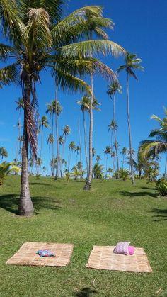 É Barra do cahy. Pode chegar.  www.cumurumagicaltour.com.br