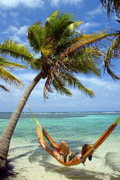 Belize. Well this looks way better than anatomy class... Belize Honeymoon, Belize Vacations, Vacation Memories, Vacation Spots, Beautiful Islands, Beautiful Places, Countries In Central America, Paradise Island, Kayak Adventures