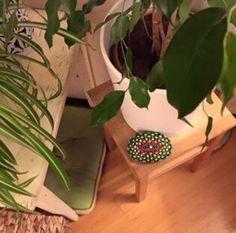 Oasis, Plants, Art, Art Background, Kunst, Plant, Performing Arts, Planets, Art Education Resources