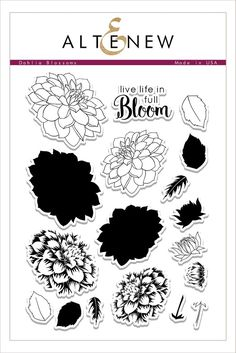 Dahlia Blossoms Stamp Set