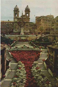Spanish steps of Rome. Went here. Lovely.