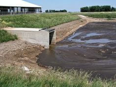 Joy! Livestock Manure Can Now Be Regulated as a Solid Waste