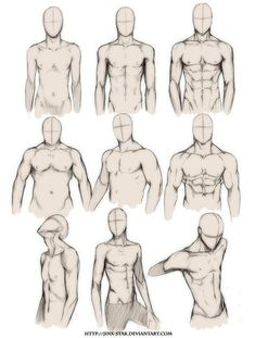 Drawing Anime Male Body How to Draw the Human Body Study Male Body Types Comic M. - Drawing Anime Male Body How to Draw the Human Body Study Male Body Types Comic Manga - Anatomy Sketches, Body Sketches, Anatomy Drawing, Art Drawings Sketches, Drawings Of Men, How To Draw Anatomy, Hipster Drawings, Pencil Drawings, Drawing Body Poses