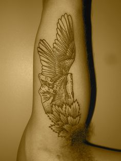 hand wing  by lyam, via Flickr