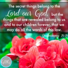 The secret things belong to the Lord our God, but the things that are revealed belong to us and to our children forever, that we may do all the words of this law.  Deuteronomy 29:29