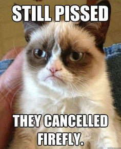 The reason grumpy cat is grumpy.