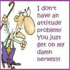 I don't have an attitude problem! You just get on my damn nerves!!!!