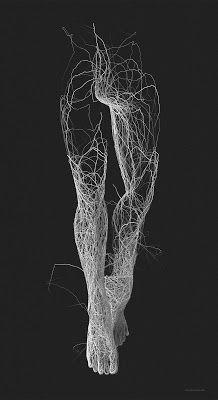by artist Janusz Jurek Creative Photography, Art Photography, Fantasy Wire, Brain Art, Zebra Art, Human Body Art, Generative Art, Anatomy Art, Light Painting