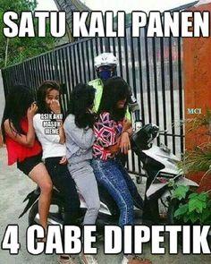 Ketika pak polisi panen Foto Meme, Turu, Jokes Quotes, Adult Humor, Funny Cute, Funny Photos, Haha, Comedy, Funny Memes