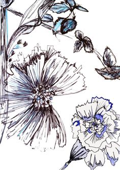 Scratchy floral drawing