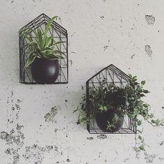 #kwantuminhuis Decoratie HUIS > https://www.kwantum.nl/wonen/woondecoratie @mijnhuisje