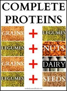 Complete Protein Combination Chart - Bing images