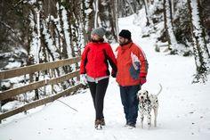 #caminar por el #campingverneda con tu #perro es posible #campingwithdogs #doggylover #animallovers #dalmata #doggyfamily #campingconperro #perrosvaldaran