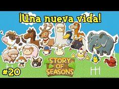 Story Of Seasons #20 | Llega una nueva vida