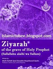 Ziyarah Of The grave Of The Holy Prophet (S.A.W.W) Pdf Book Download   Islamic Tube Islamic Library, Pdf Book, Holi, Tube, Books, Libros, Book, Holi Celebration, Book Illustrations