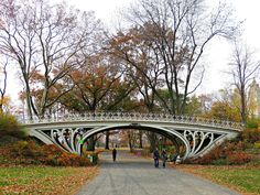 The beautiful Gothic Bridge in New York City's Central Park was made of steel and cast iron in 1864, when it was designed by Calvert Vaux. This bridge gets its name from the Gothic Cathedral style curves of the ironwork on the spandrels. November 15, 2013.