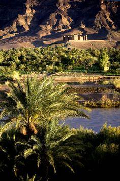 | ♕ | Oasis - Sahara, Morocco | by © Andrea Loria