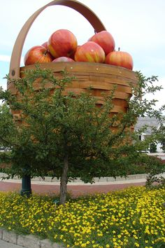 Apple basket, Longaberger Homestead, Dresden, Ohio