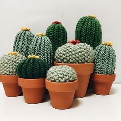 Risultati immagini per cactus tejidos al crochet Crochet Diy, Cactus En Crochet, Crochet Flowers, Amigurumi Patterns, Crochet Patterns, Confection Au Crochet, Crochet Decoration, Crochet Animals, Yarn Crafts