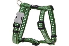 Red Dingo Reflective Dog Harness Large Green -- Check out the image by visiting the link.(This is an Amazon affiliate link and I receive a commission for the sales)