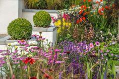 R Space at RHS Tatton Park Flower Show 2015.