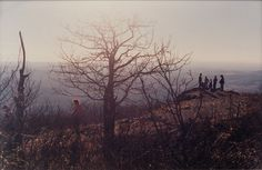 Meeting on the Hill (2000) / by Justine Kurland