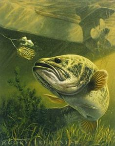 Spinnerbait fish.