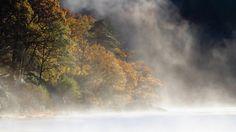 General 1920x1080 landscape trees mist