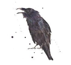 In Finnish myth, there is an magical jewel called Ravenstone, what raven keeps under its tongue or in its nest.  Raven can absorb magical powers from the jewelstone, and with jewels powers it could turn itself or any object invisible. Ravens killer could sometimes gain stones powers to him/herself.