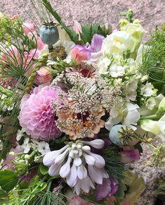"""29 gilla-markeringar, 2 kommentarer - Gro-Fjällbacka (@grofjallbacka) på Instagram: """"Sommarbukett från i fjol🌸 dahlia, funkia, zinnia, blomstermorot, flox, luktärt, lejongap, dill…"""" Zinnias, Floral Wreath, Wreaths, Flowers, Instagram, Decor, Floral Crown, Decoration, Door Wreaths"""