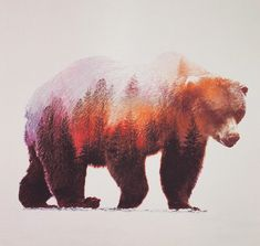 Gorgeous picture gallery. Artist Shows Us Animals With Their Environments Inside Them, So Daoist.