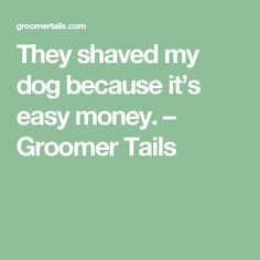 They shaved my dog because it's easy money. – Groomer Tails
