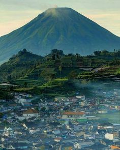 Dataran Tinggi Dieng, Wonosobo, Central Java.   Fajar13