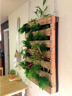 Palette hangars - pop up shop idea for palette to be hooked on chain from wall hooks.