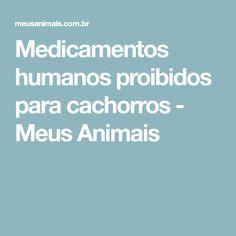 Medicamentos humanos proibidos para cachorros - Meus Animais