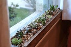jardiniere en palette -rectangulaire-composition-succulentes-cailloux