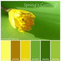 yellow floral color palette