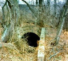 """Photograph of a brush overgrown tubular entrance. Credit: Courtesy of The Coal and Coke Heritage Center, Penn State Fayette, www.coalandcokepsu.org/  A """"manway"""" is an entry used exclusively for personnel to travel form the shaft bottom or drift mouth to the working section; it is always on the intake air side in gassy mines. Also, a small passage at one side or both sides of a breast, used as a traveling way for the miner, and sometimes, as an airway, or chute, or both. Heritage Center, Coal Mining, When Us, Coke, Entrance, Sisters, Traveling, Photograph, Breast"""