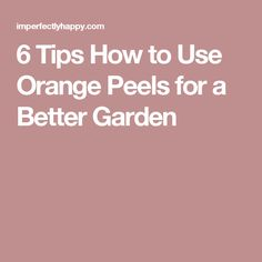 6 Tips How to Use Orange Peels for a Better Garden