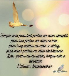 William Shakespeare, Philosophy, Romantic, Memories, Movie Posters, Cookie, Inspirational, Folklore, Proverbs