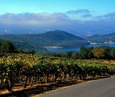 ilverado Trail, California 17 of 26   Here's a road trip where the food rivals the scenery. Flanked by the rolling vineyards of more than 40 wineries, the Silverado Trail on the eastern edge of Napa Valley road passes a who's who of the American culinary scene. Stag's Leap Wine Cellars, where a 1973 Cabernet made headlines, and Yountville, home to the French Laundry restaurant, are two highlights.  Stop: Learn to make your very own wines at a blending session and then take the bottle home…