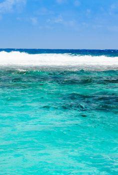 A beleza da cor azul-turquesa...