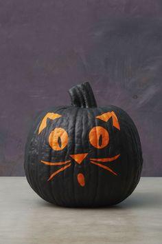 Scaredy Cat - GoodHousekeeping.com