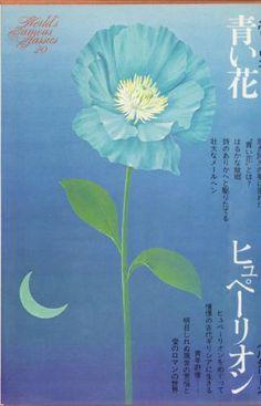 h_book_0002.jpg (321×500)