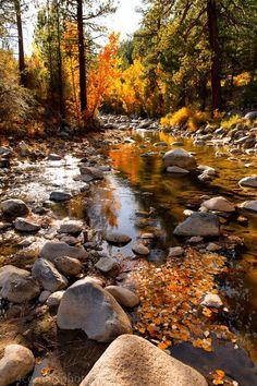 West Walker River near Pickel Meadows, California; photo by .Troy Montemayor on 500px