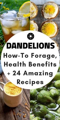 24 Dandelion Recipes + Health Benefits + Foraging Tips - Gluten-free, vegan, vegetarian dandelion recipes + nutritional information + how to forage dandelions! to health benefits of Dandelion Salad, Dandelion Jelly, Dandelion Wine, Sport Nutrition, Healthy Nutrition, Healthy Eating, Nutrition Poster, Nutrition Store, Home Remedies